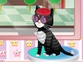 Игра Салон для кошек