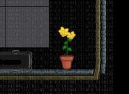 Игра Спаси растение