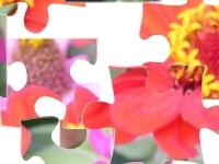Игра Цветы 2