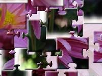 Игра Хризантемы