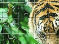 Игра Тигр