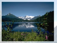 Игра Озеро Аляска