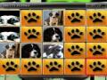 Игра Одинаковые щенки