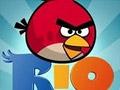 Игра Злые птички Рио
